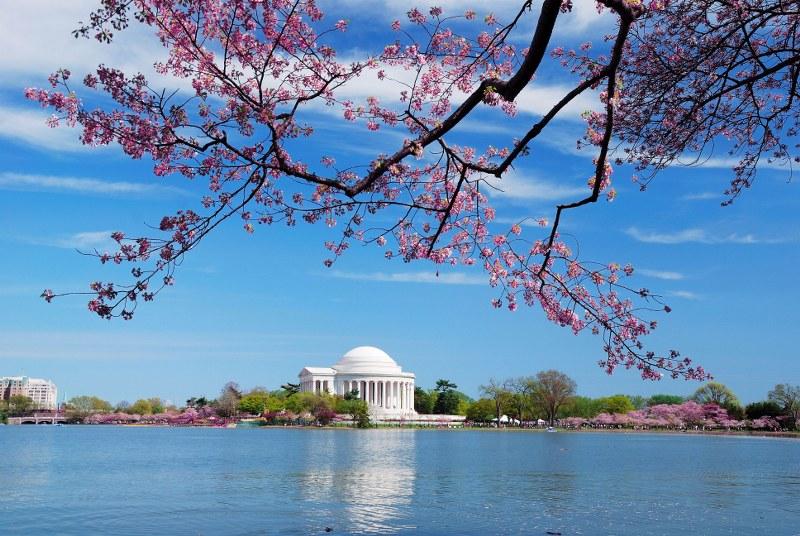 travel nursing in Washington | originnurses.com
